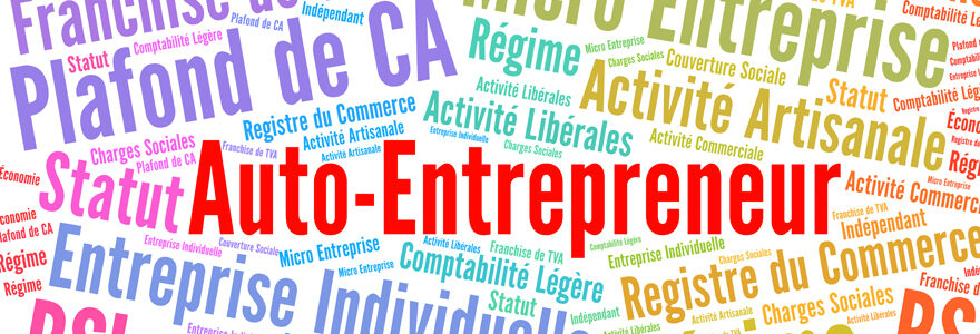 statut d'auto entrepreneur